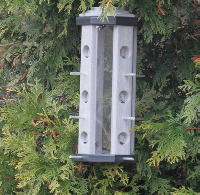 pff poly finch feeder with glass